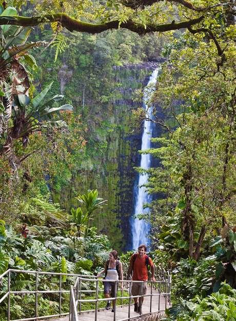 El Parque Estatal de las Cataratas Akaka es una de las visitas que más gustan a los más pequeños.