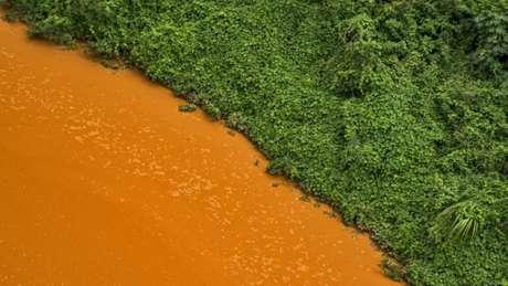 Contraste de cores entre a vegetação e a água tomada pela lama