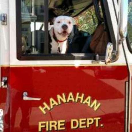 Jake agora ajuda bombeiros de Hanahan a ensinar crianças a como agir em caso de incêndio