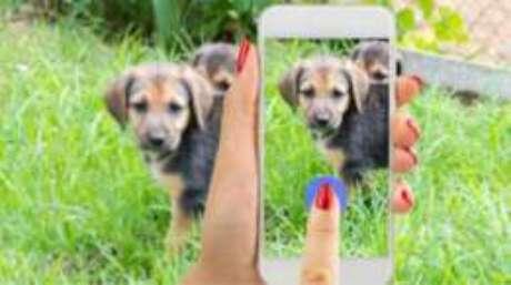 Segundo o Facebook, transmissões ao vivo recebem mais comentários do que vídeos normais