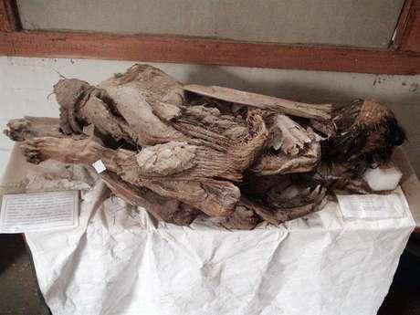 Imagem de 4 de junho de 2016 mostra corpos mumificados da comunidade indígena Aymara que habitava as montanhas andinas.