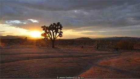 Vale da Morte, no Deserto de Mojave