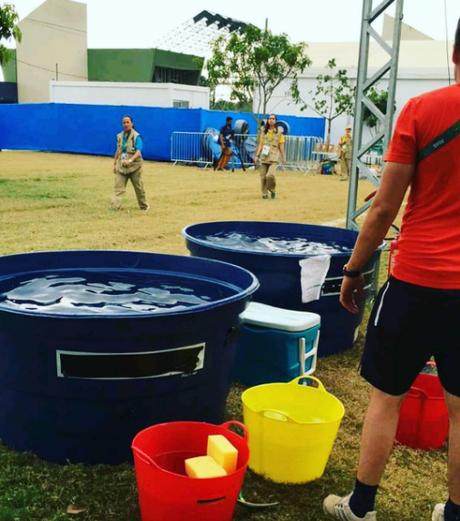 Após as provas os animais recebem baldes de água gelada para relaxar os músculos