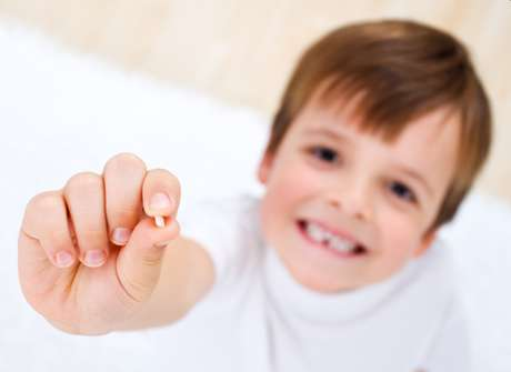 Um dente que caiu e ficou guardado em casa não serve mais para esse fim uma vez que a polpa do dente desidrata e as células morrem