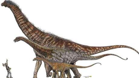 O Austroposeidon magnificus é o maior da ilustração, que compara o tamanho dele com o de outros dinossauros e um humano