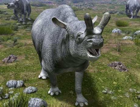O período Eoceno teve a propagação de três classes de mamíferos