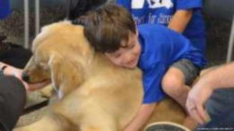 O cão que conseguiu a