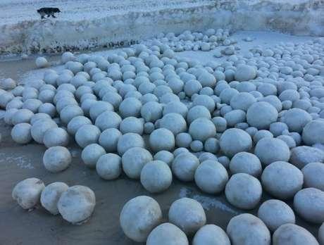 Bolas de neve naturais de diferentes tamanhos cobriram parte do Golfo de Ob