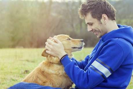 Cães podem ter começado a comer restos de refeições humanas ainda no início da agricultura