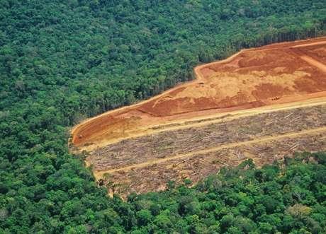 Segundo o Inpe, o desmatamento da Amazônia teve crescimento de 29% em 2016.