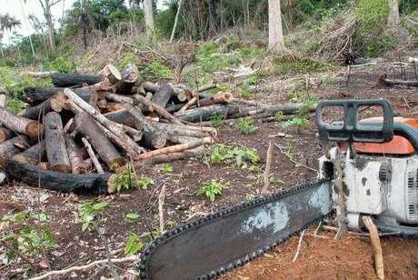 """Para o grupo de especialistas, o Brasil """"está considerando debilitar"""" a proteção institucional e jurídica para os povos indígenas, quando o que deveria fazer é reforçá-la."""