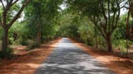 Moradora sonha em ver veículos elétricos nas estradas de Auroville
