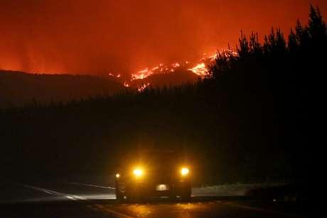 Incêndio florestal já dura duas semanas e devastou uma enorme área verde do país