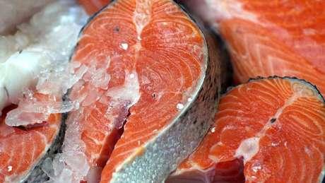 No Chile, são criadas três espécies: o salmão do Atlântico, o do Pacífico e a truta arco-íris