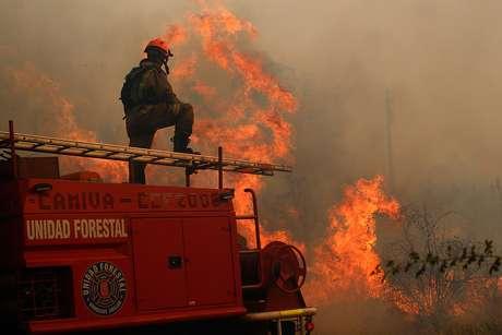 Los impresionantes números que dejaron los históricos incendios en Chile