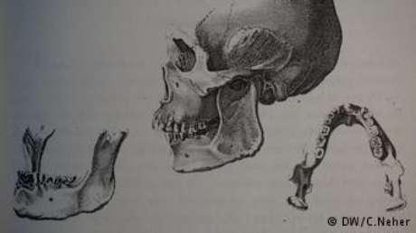 Em livro no qual relata detalhes de expedição ao Brasil, Wied-Neuwied reproduz crânio botocudo que trouxe para a Alemanha e foi dado de presente a Blumenbach