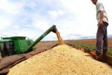 Este ano, devem ser colhidas 224,2 milhões de toneladas de cereais, leguminosas e oleaginosas, sendo 93% de soja, milho e arroz