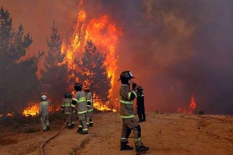 Alerta roja en Valparaíso y Viña por incendio forestal
