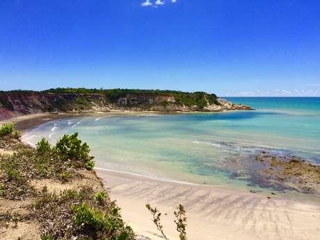 Foto: Reprodução/Fazenda de Praia