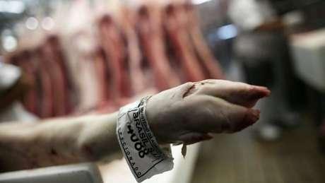 Sistema de fiscalização precisa de renovação, mas carne brasileira é de alta qualidade, segundo Pedro Felício