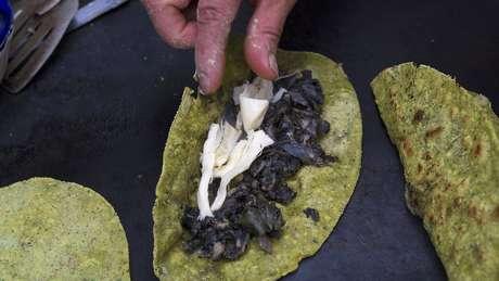 Tortilhas de milho combinadas com o milho infectado oferecem alto valor nutricional