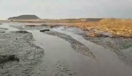 Reportan que mar de Huacho se ha retirado varios metros.