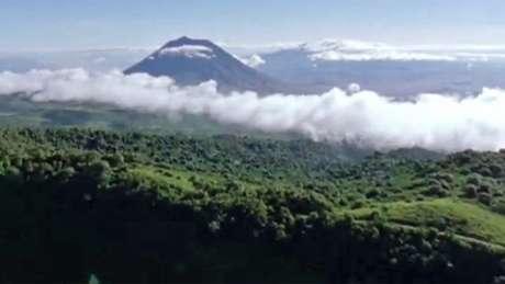 O Serengueti: teria sido assim o Saara há cinco mil anos?