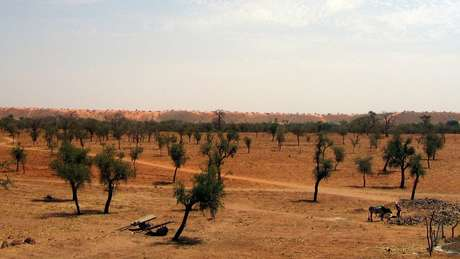 O Sahel é uma zona de transição, que atravessa 16 países da África, entre o deserto do Saara e a savana sudanesa