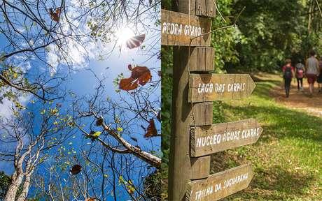 Aproveite o melhor de São Paulo: trilhas em meio à natureza para todos os estilos e gostos!