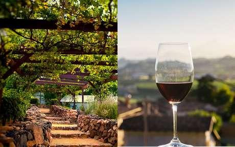 São Roque é a cidade perfeita para quem quer comer bem e admirar uma incrível paisagem!
