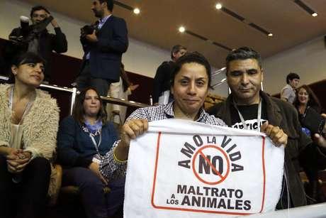 Cámara Baja aprueba ley de tenencia responsable de mascotas | Nacional — Ley Cholito