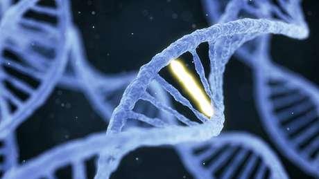 Engenharia genética é hoje disseminada. Até onde ela poderá evoluir?