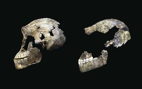 Imagem compara o crânio de um homo naledi descoberto em 2013 (dir.) com outro encontrado recentemente.