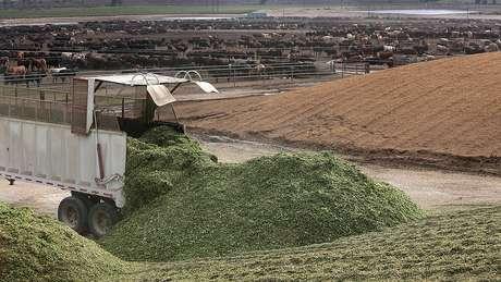 Rancho no Colorado foi um dos investimentos da JBS no exterior