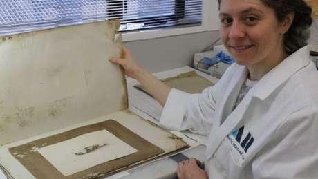 Josefin Bergmark-Jimenez mostra a pintura, que estava numa pilha de papéis coberta de mofo e fezes de pinguins