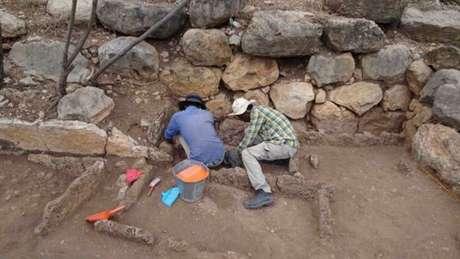 Mais escavações são esperadas para o próximo ano