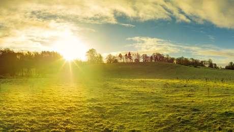 Campo em dia de sol