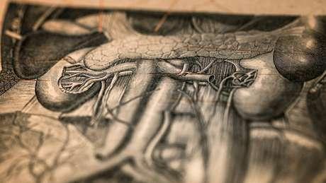 Ilustração de livro de medicina antigo