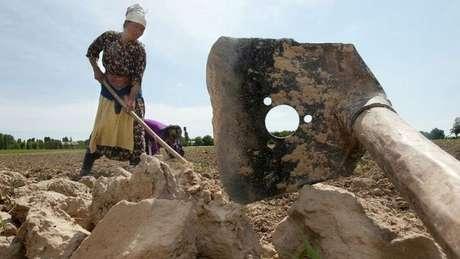 Mulher trabalha em campo no Uzbequistão
