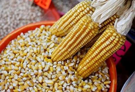 Espigas de milho são exibidas em mercado da Cidade do México, México 19/5/2017 REUTERS/Henry Romero