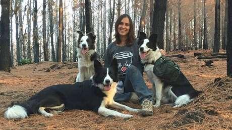 A ambientalista Francisca Torres passou a levar suas cadelas border collie para replantar a vegetação de áreas consumidas pelo fogo