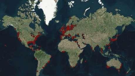 As 'zonas mortas', áreas com baixo nível de oxigênio, estão localizadas fundamentalmente nas costas