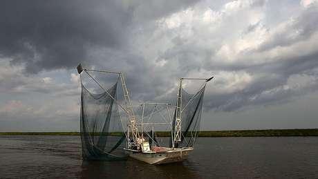 Expansão da 'zona morta' no Golfo do México afeta a atividade pesqueira na região