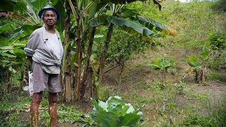 STF nega indenização ao MT por reservas indígenas