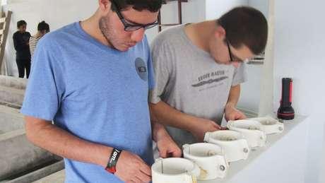 Estudiantes de Cornell em Honduras