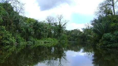 Um dos acessos à Reserva do Rio Iratapuru, no Amapá, parte da Renca