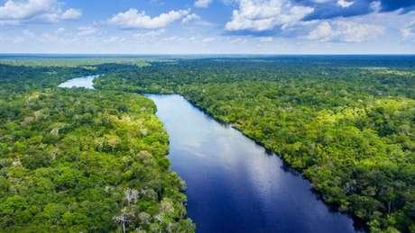 Rio em meio à floresta amazônica