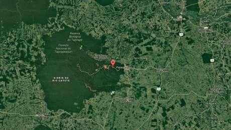 Área protegida pela Vale em parceria com o governo está preservada, enquanto todo o em torno fora dessa área foi devastado