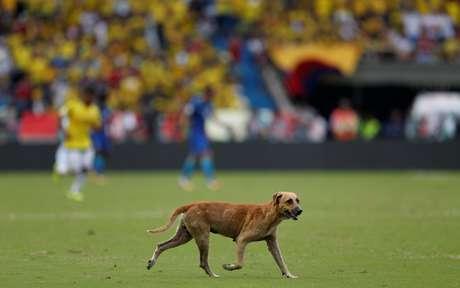 Um cachorro invadiu o campo no primeiro tempo e deu bastante trabalho até deixar o gramado
