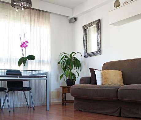 Plantas no apartamento deixam o ambiente mais alegre